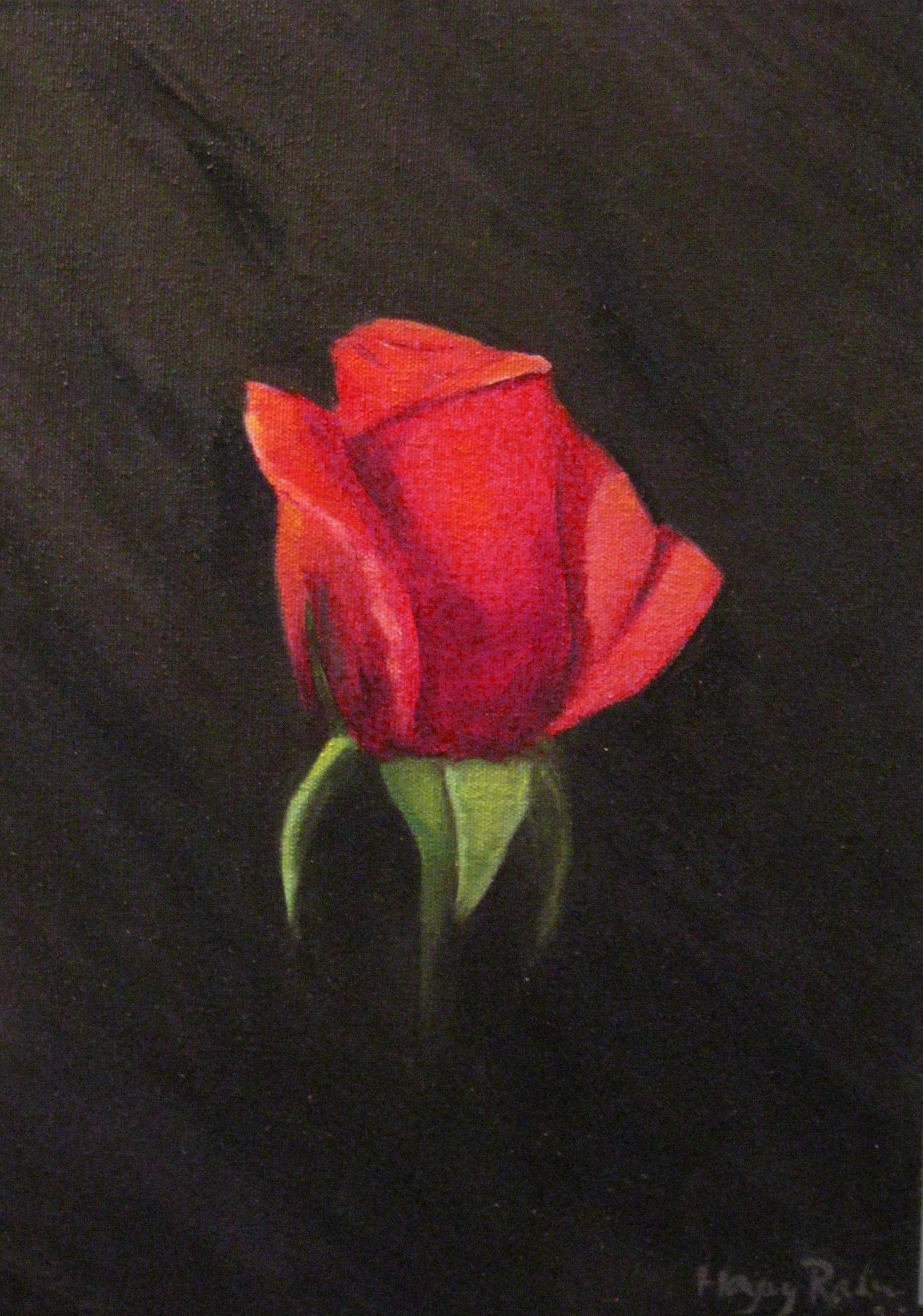 Best Red Rose Print